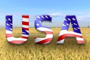 中美最新消息!美考虑对华启动新一轮301调查 中国商务部:单边贸易主义不利美国 更不利全球经济复苏