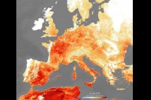 欧盟气象观测机构: 北极雪覆盖面积逐年缩减 2020年是欧洲史上最热的一年