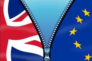脱欧打击对欧盟的出口销售 英国公司盼政府监督并落实贸易协议