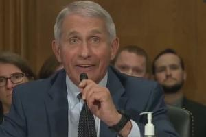 """福奇参议院听证会怒斥:""""参议员先生,如果有人撒谎,那一定是你"""""""